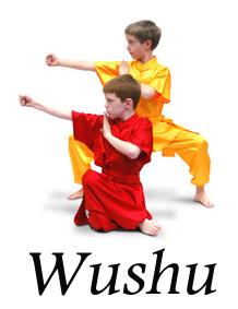 wushu sector 3